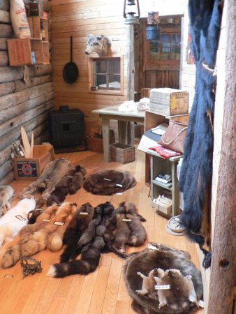 High Level, Canada: Learn about the life of a fur trapper at our Trappers Cabin exhibit
