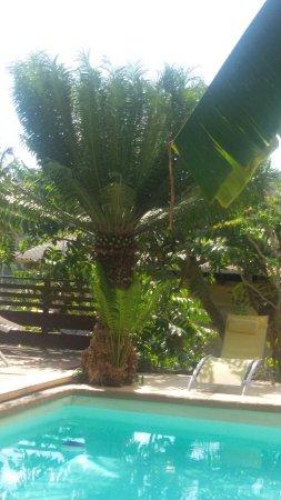 Kangani, Mayotte: 20160923_084202_large.jpg