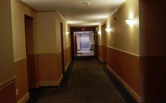 Glengate Hotel: HALLWAY