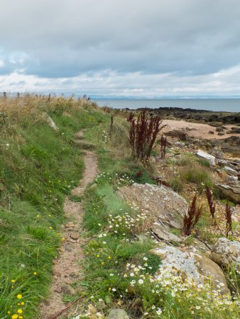 Fife, UK: Path north of Kingsbarns.