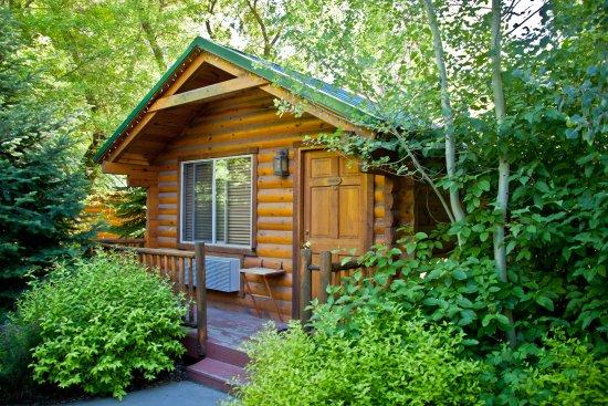 Alaskan Inn: Cabin in Summer