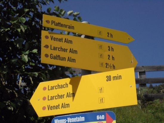 Hotel Alpina: des promenades sans surprise