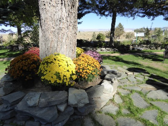 Lake View Lodge: Beautiful flowers everywhere.