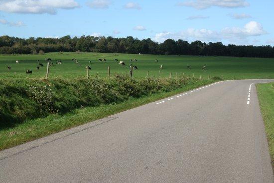 Overijssel Province, Ολλανδία: De Luttenberg, vlakbij BuitenOosten