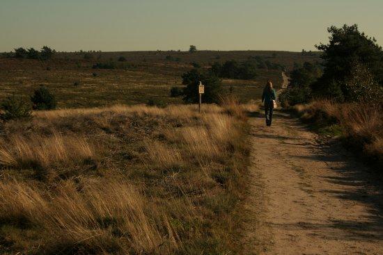 Overijssel Province, Nederland: Nationaal Park De Sallandse Heuvelrug