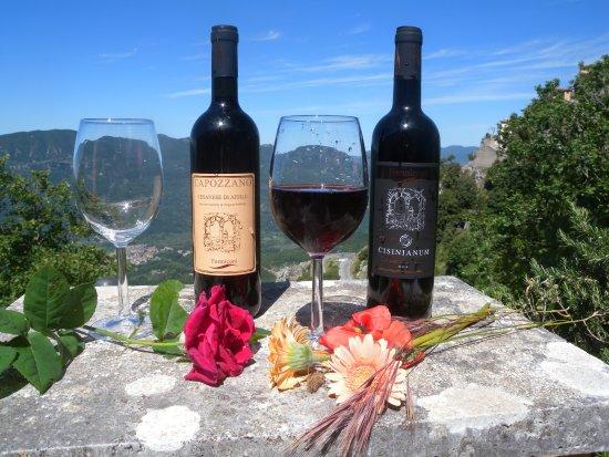 Cervara di Roma, Italien: Un panorama mozzafiato e un buon bicchiere di vero Cesanese di Affile