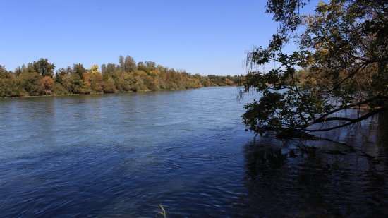 Anderson, CA: Sacramento River