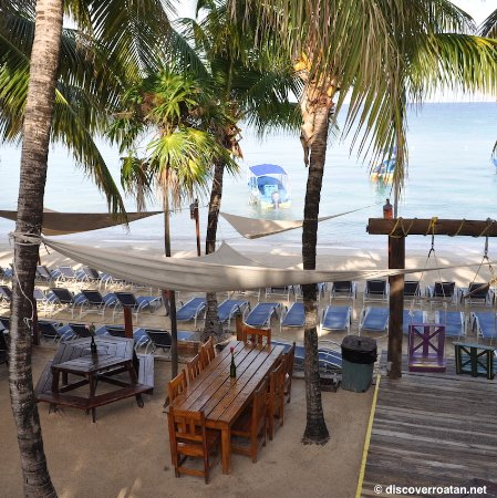 Discover Roatan Excursions Tours Bananarama Dive Beach Resort In West Bay
