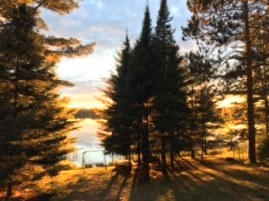 Eagle River, WI: Sunset through the pines