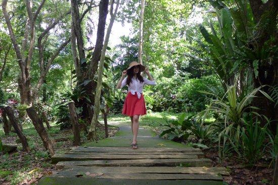 La Mesa Eco Park: Walking along the Drilon Orchidarium