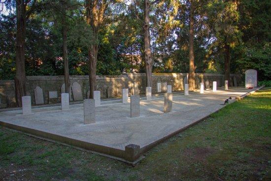 British Cemetry: British Cemetery and cat