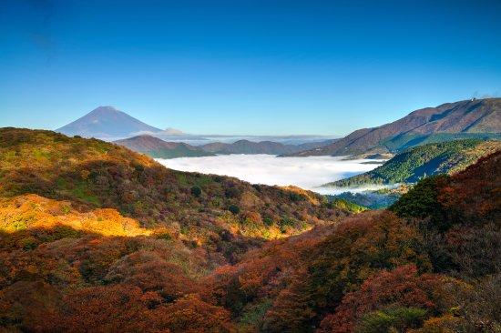 Explore Hakone