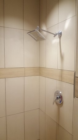 giant rain shower head. Irving Enfield Big Stop  The Giant Rain Style Shower Head In The Drivers Showers Picture
