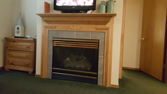Homestead Suites: Fireplace