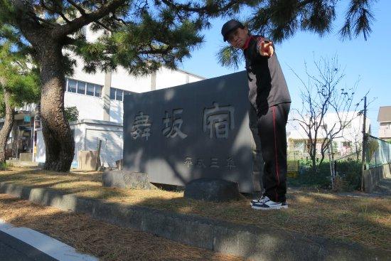 Row of Pine Trees in Kyutokaido: 舞阪宿の石碑の前で