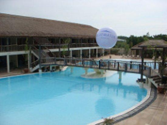 Bluewater Panglao Beach Resort: プール