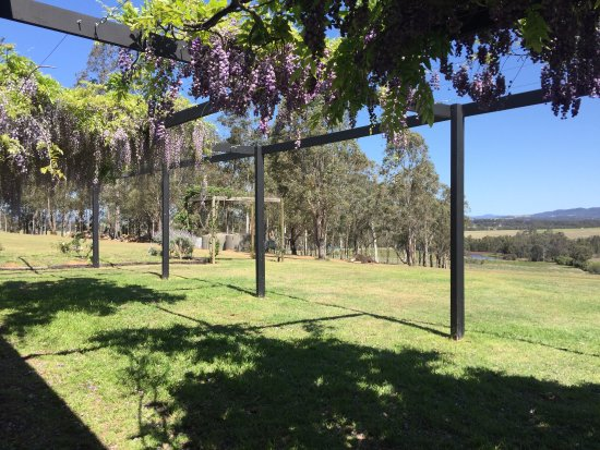 Waverley Estate: The beautiful view whilst you enjoy your cheese and wines