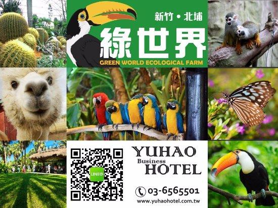 Yuhao Hotel : 新竹飯店,新竹住宿,新竹飯店推薦,新竹住宿推薦,新竹商務飯店,Business Hotel Hsinchu,Hotel Hsinchu
