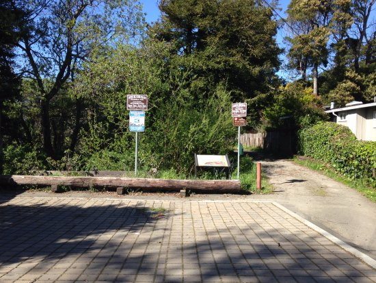 Otis Johnson Park: The parking and entrance to the park. It is easy to miss because it is not whats expected