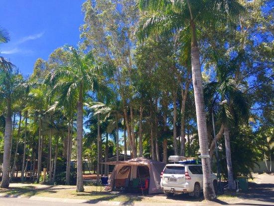 Noosa Caravan Park : photo0.jpg