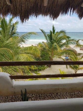 Almaplena Eco Resort & Beach Club: 20160924_135312_large.jpg