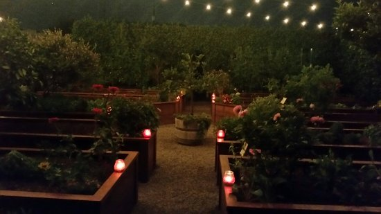 Stanton, CA: Garden at night