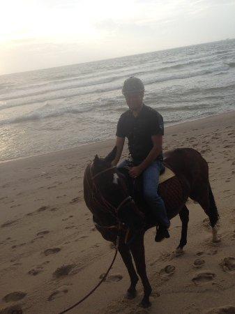 Cherngtalay, Tailandia: Фото на лошадке Леди, пляж Банг-Тао в дождливый вечер
