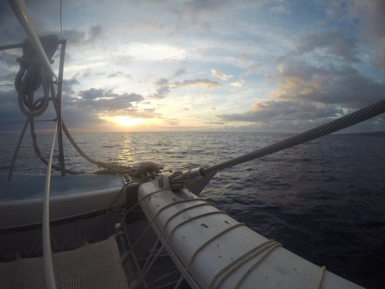 Ocean Sports Sunset Champagne Sail: photo0.jpg