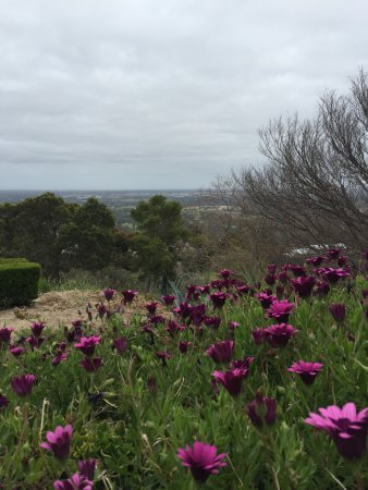 Brigadoon, Australia: photo7.jpg