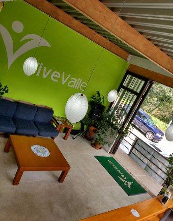 ViveValle