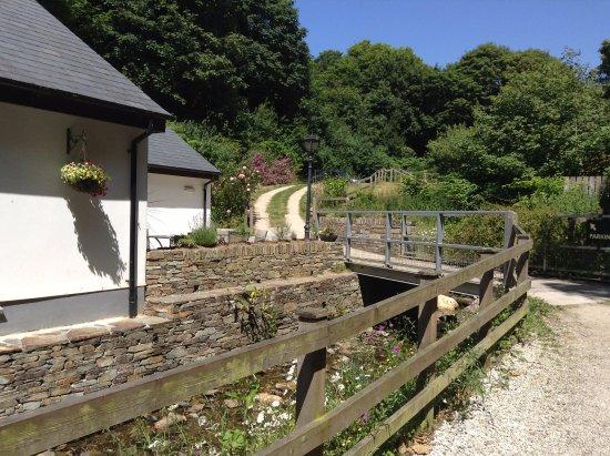 Trebarwith, UK: Back terrace