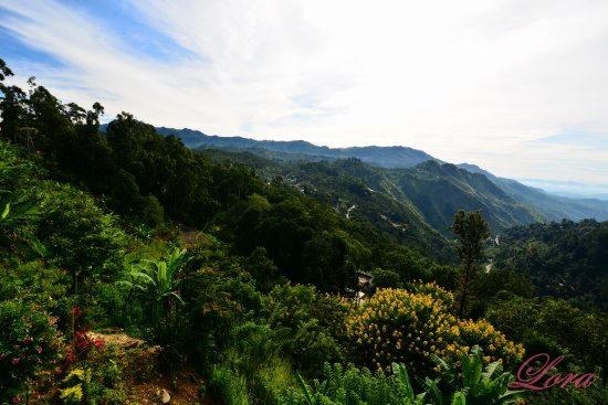 Ella Gap Panorama: View from the garden