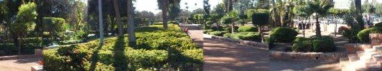 Jardin el Harti: Jardin el Harti