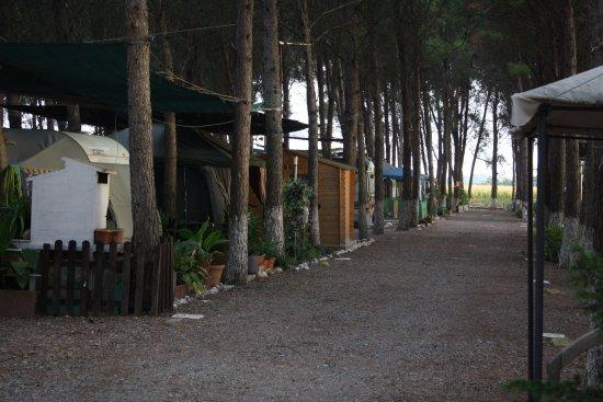 Camping El Temple