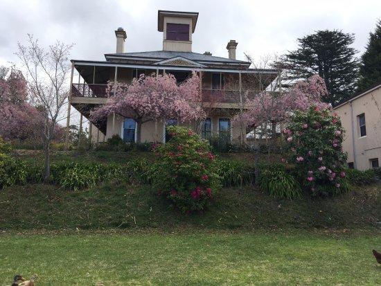 Mount Victoria Photo