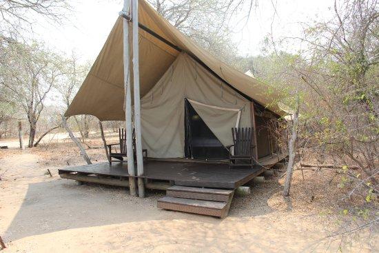 Rhino Post Safari Lodge: Plains Camp Tent.