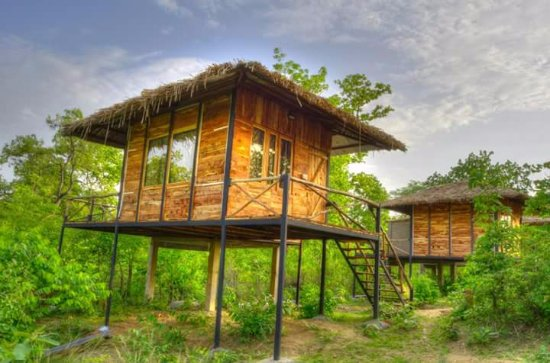 Tribal Camp: log hut