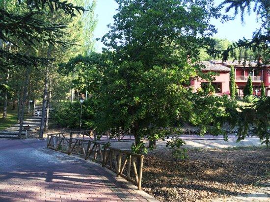 Fuentenava de Jabaga, Spain: Jardines del hotel