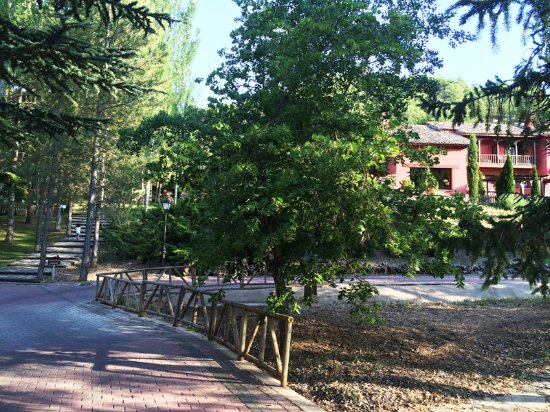 Fuentenava de Jabaga, Испания: Jardines del hotel