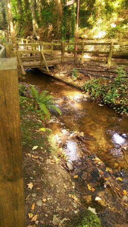 Douglas, UK: Summerhill (fairy) Glen