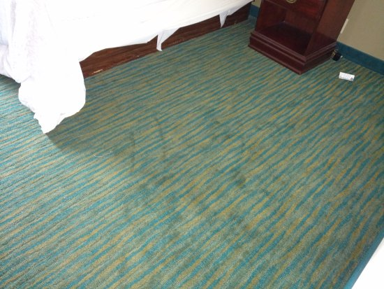 Lake Park, GA: Stained carpet, right of the bed