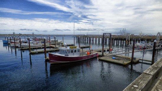 Hatches Harbor