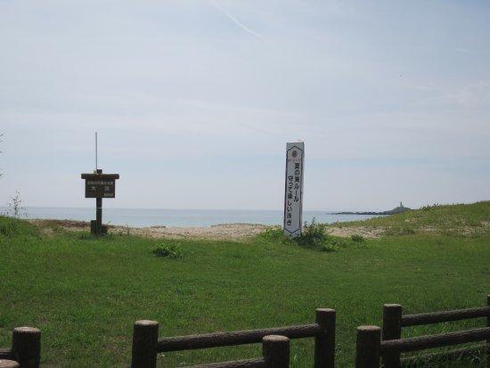 Ohama Beach: 道から見た大浜