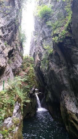 Bole, Suíça: photo5.jpg
