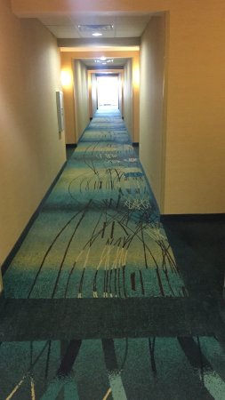 SpringHill Suites Dallas DFW Airport North/Grapevine: photo0.jpg