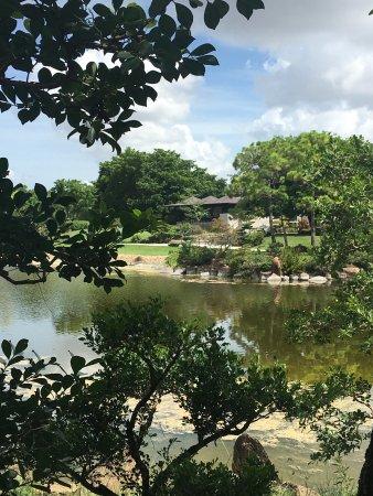 Morikami Museum & Japanese Gardens: Le lac