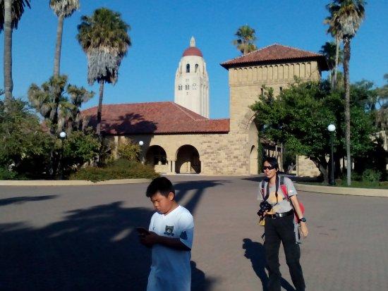 Palo Alto, CA: Hoover tower fm d back
