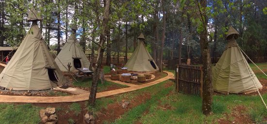 Little Wings Teepee Camp
