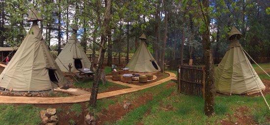 Little Wings Teepee Camp