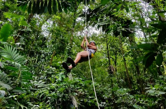 Pacuare Lodge: Canopy Tour